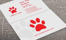 Veterinary & Pet Care 1